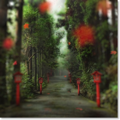 the gentle red path-1